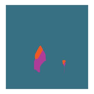 Placement pass logo